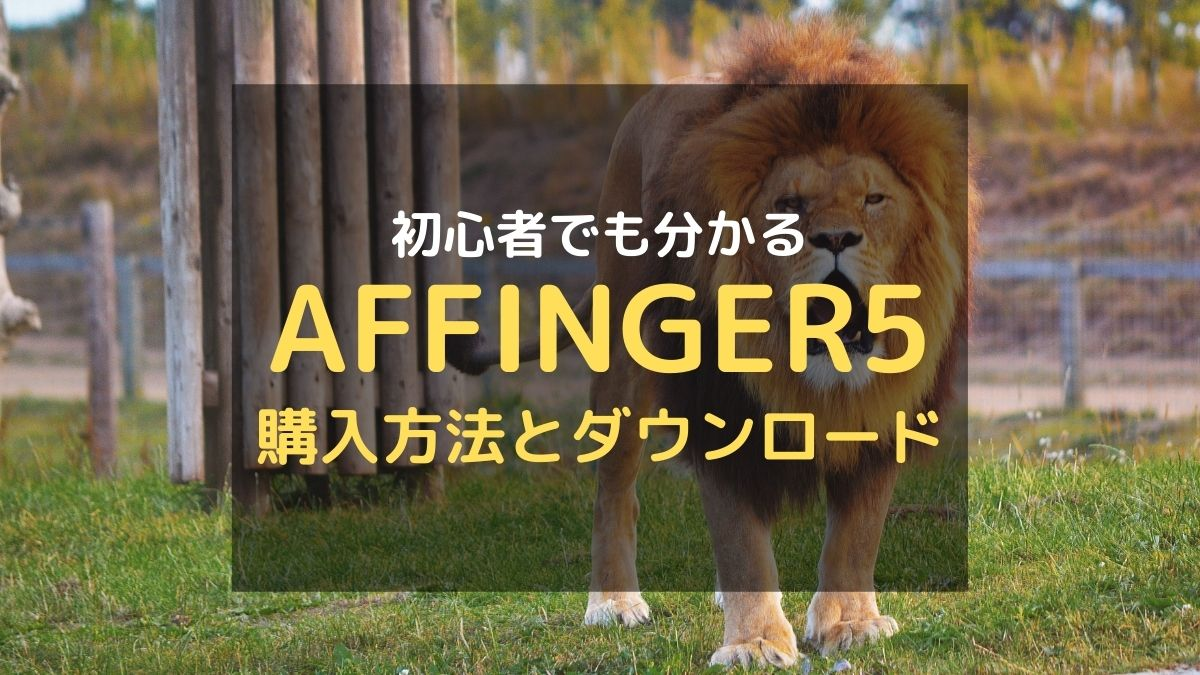 AFFINGER5の購入方法とダウンロード・設定手順を解説